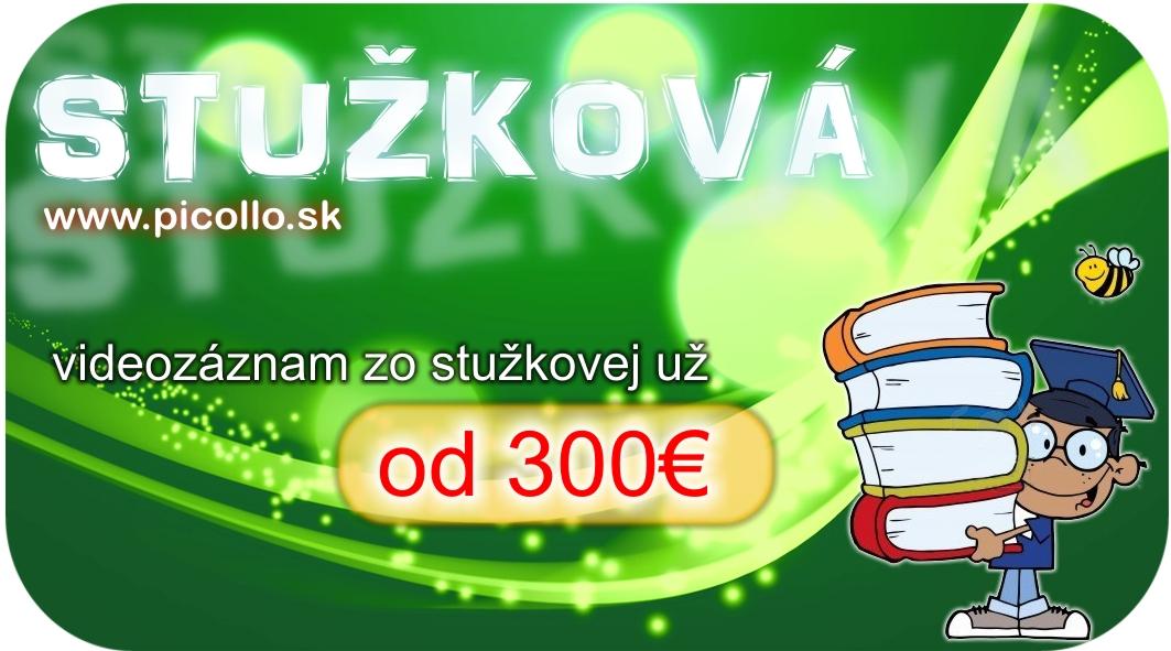 stuzkova_2013